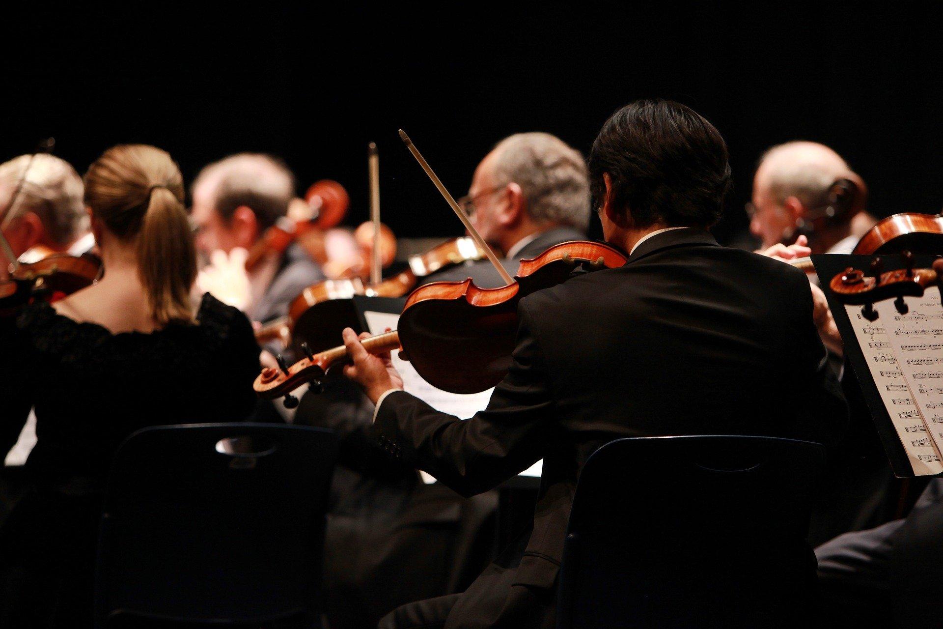 Концерт Российского национального оркестра в «Царицыне» перенесут