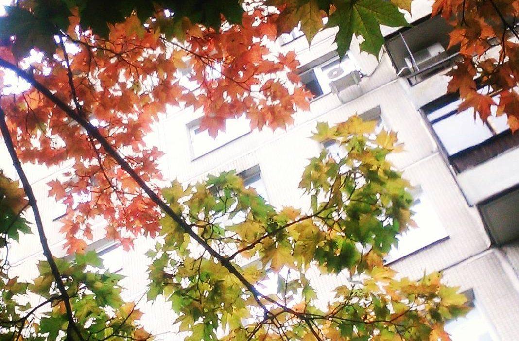 Город меняет цвет