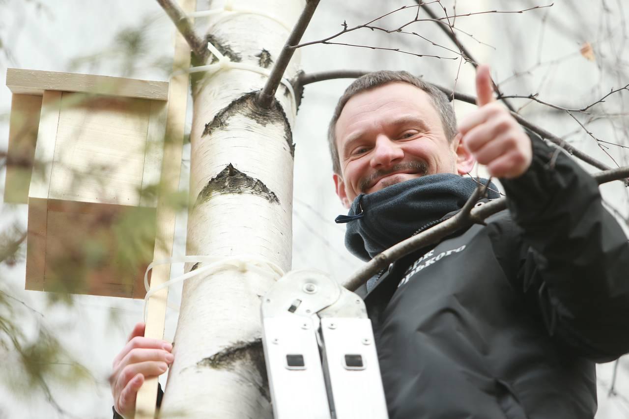 Более 200 кормушек для птиц и зверей установили в московских лесах