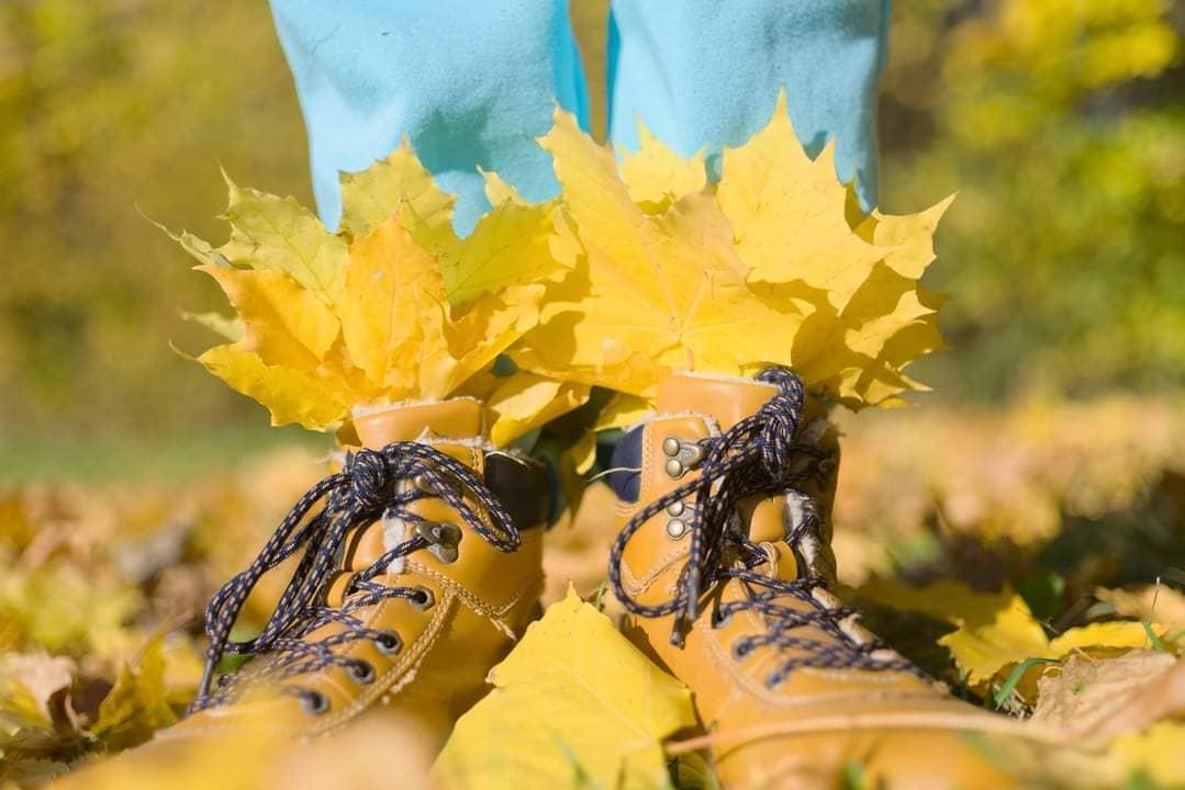 Осень, мы у листьев спросим