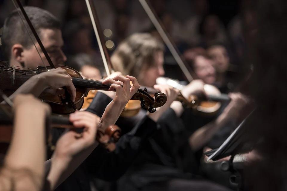 Виртуальный концерт состоится в музее-заповеднике «Царицыно»