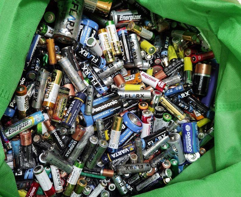 Зеленый город: новые волонтеры Орехова-Борисова Южного собрали 10 килограмм батареек